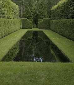 Isn't this reflection pond incredible? I love how the hedges at the end of the pool are reflected in the dark waters of the pond and are framed by the hedges alongside, making the reflection an art form itself. Garden Pool, Water Garden, Garden Landscaping, Balcony Gardening, Formal Gardens, Outdoor Gardens, Hedges, Cerca Natural, Landscape Design