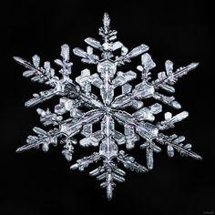 *-*Photo Snowflake-a-Day