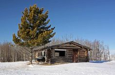 Log Cabin in the Woods | Little Cabin on the Prairie | Log home in the woods