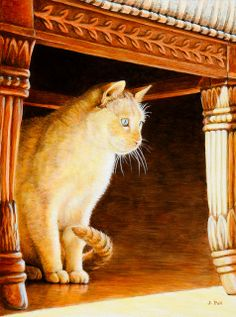The White Cat by jpellr2, via Flickr