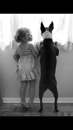 Precious little girl and her Boston Terrier looking out window