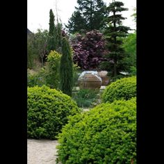 http://www.jardins-agapanthe.com/media/pepiniere/photo3%20agapanthe2.JPG