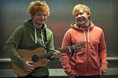 Ed Sheeran e Rupert Grint