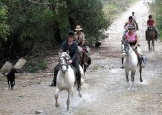 Welcome to the equestrian world of  Los Caballos del Mosquin founded in 1999 by Eva Maria Sigvardt, with more than 14 years of experience in guiding horse treks in this area. Los Caballos del Mosquin was founded by Eva Maria Sigvardt  in 1999 with more than 14 years of experience in guiding horse treks in the area.  As well as trekking they can also offer you an active holiday working with andalucian horses -please book early!