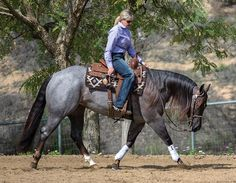 Got Fit? Want to help keep your horse sound, physically and mentally? Get him fit to perform his job. Horses And Dogs, Show Horses, Pretty Horses, Beautiful Horses, Ranch Riding, Westerns, Horse Exercises, Reining Horses, Western Riding