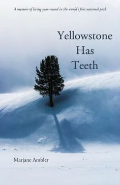 Yellowstone has Teeth by Marjane Ambler Visit Yellowstone, Yellowstone National Park, National Parks, New Books, Books To Read, The Longest Ride, Bureau Of Land Management, Old Faithful, Lake District
