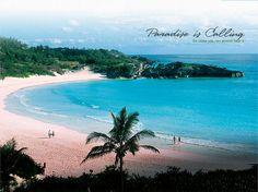 Bermuda.(bahama.come on pretty mama.)