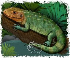 Caiman Lizard Daily Creature by NadilynBeatosArt on Etsy, $10.00