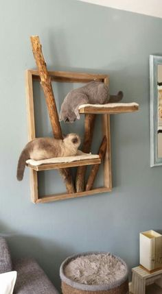 Hallo liebe Emily Feline fabelhafte K Katzen yey! - Hallo Liebe Emily Feline fabelhaft K Katzen yey! Hallo liebe Emily Feline fabelhafte K Katzen yey! Diy Cat Tree, Cat Trees, Cat Playground, Playground Design, Natural Playground, Playground Ideas, Cat Condo, Cat Room, Cats Diy