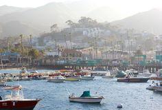 Catalina Island - Carrie Bradshaw Lied