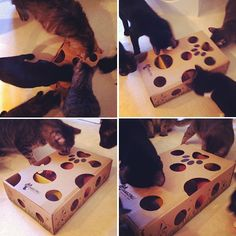 What a fun idea!!! grab an old cardboard box and cut different sized holes around the top and sides. Fill the inside with different sized balls and seal the box up!