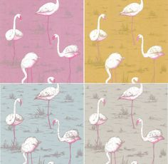 i really like these colors of flammingo wallpaper