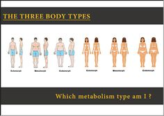 Which Metabolic type am I ? The three body types