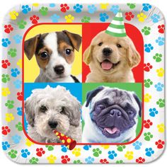 Dog Party Lunch Plates (8)
