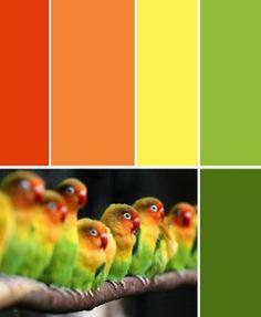 Orange to green.