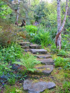 Gardening on a hill on Pinterest | Stone Steps, Stone Stairs and ...