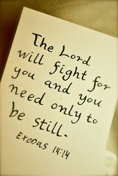 Exodus 14:14....strength will rise as we wait upon the LORD