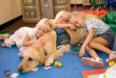 Canine Companions for Independence    How does your dog show his/her love?? Through his eyes? Tail? Kisses? Stomach?