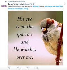 Orangetwig_socialmediamarketing_twitter_04