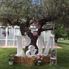 Many brides are looking to incorporate vintage shabby chic wedding ideas into their ceremony, reception and all aspects of their wedding celebrations Trendy Wedding, Perfect Wedding, Diy Wedding, Rustic Wedding, Wedding Reception, Wedding Photos, Dream Wedding, Wedding Ideas, Reception Ideas