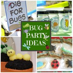 Great bug party ideas for boys and girls. See more party ideas at CatchMyParty.com