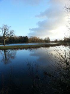 Tag auf dem Land #Stör #Norddeutschland Schleswig-Holstein am Fluss Störwiese Überschwemmung Winterhochwasser
