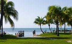 Florida © Viktoria Urbanek
