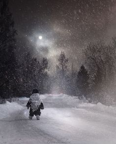 The snow way by Elena Shumilova