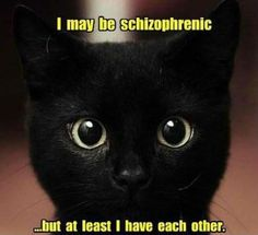 I may be schizophrenic...but at least I have each other.