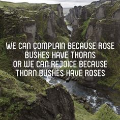 We can complain because rose bushes have thorns or we can rejoice because thorn bushes have roses