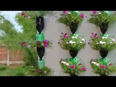 Viewer, were you looking to know how to make a plastic bottle garden? Don't worry, I will make a play list on how to make planters out of plastic bottles.Hanging Plants in Plastic Bottles Hanging Flower Pots, Diy Hanging, Hanging Plants, Plastic Bottle Crafts, Recycle Plastic Bottles, Garden Ideas Diy Cheap, Plants In Bottles, Flower Tower, Bottle Garden