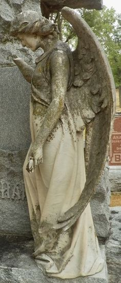 Cemetery Angels, Cemetery Statues, Cemetery Art, Angel Statues, Angels Among Us, Angels And Demons, Cement Statues, Creepy Images, Angel Warrior