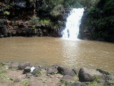 Waimea Valley's Ancient healing Waterfall in Hawaii.  Went here twice!