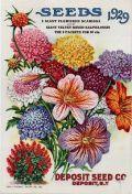 Deposit Seed Co. vintage seed packet clip art -- 1929