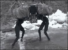 このロボットすごいけど、確かに動きがきもすぎる……