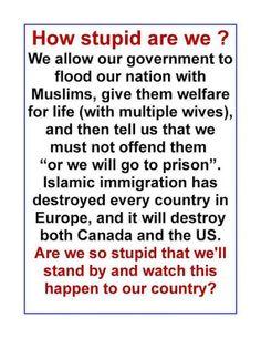 Islamic infiltration