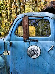 this reminds me of grandpas truck we call the Blue Goose.   My brother doesnt appreciate it like I do.  Love it!