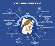 Brain Activities, Physical Activities, Sleep Specialist, High Testosterone, Sleep Supplements, Cerebrospinal Fluid, Sleep Studies, Effects Of Stress, Environmental Factors