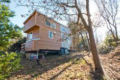 Casa de madeira sobre rodas (Foto: Divulgação)