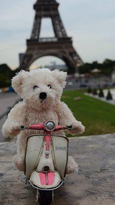 Teddy on holiday in Paris Panda Teddy, Baby Teddy Bear, Cute Teddy Bears, Teddy Bear Images, Teddy Bear Pictures, Tatty Teddy, Teddy Hermann, Tedy Bear, Teddy Bear Sewing Pattern