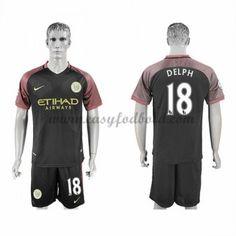 Fodboldtrøjer Premier League Manchester City 2016-17 Delph 18 Udebanetrøje