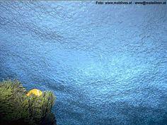 underwater rain