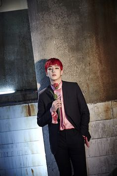 Himchan - Rose