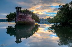 he SS Ayrfield –  previously known as the SS Corrimal, is (nowadays) a rusty shipwreck with dense vegetation on the surface of the wreck, it is stuck in the calm waters of homebush bay (west of Sydney,  Australia)