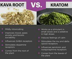 Kava vs Kratom Try our premium kratom for FREE at ➡NCKratom.com⬅