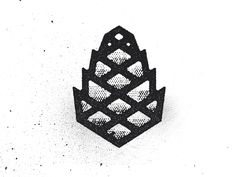 Pine Cone { Symbol Of Enlightenment }