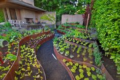 Drain the pool for a sunken garden. Spectacular Vegetable Garden decorating ideas for Stunning Landscape Contemporary design ideas with cor-ten corten gravel path metal raised beds vegetable garden