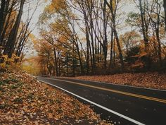 Autumn Road in Carroll County, Maryland. | Andrew H Wagner | VSCO Grid
