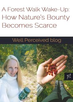 What we expect from visiting nature is becoming scarce. My delight about living near nature got poisoned when went for a forest walk Forest Fruits, Feeling Nothing, Go Outdoors, Wake Up, Sustainability, Growing Up, Things To Think About, Walking, Wellness