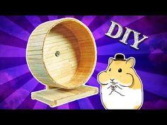 Hedgehog Wheel, Hedgehog Care, Hamster Wheel, Diy Hamster House, Hamster Toys, Popsicle Stick Diy, Mouse Cage, Bunny Room, Dog Jokes